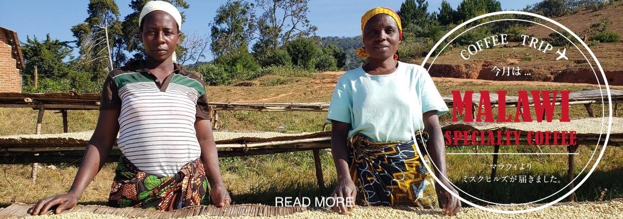 グアテマラスペシャルティコーヒー パチュージ農園