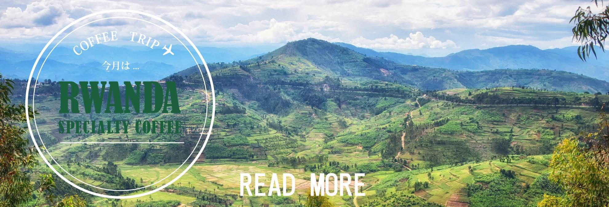 ケニアスペシャルティコーヒー カリアイニAA